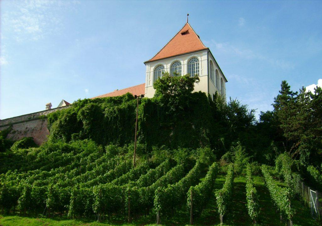 Птуйский замок