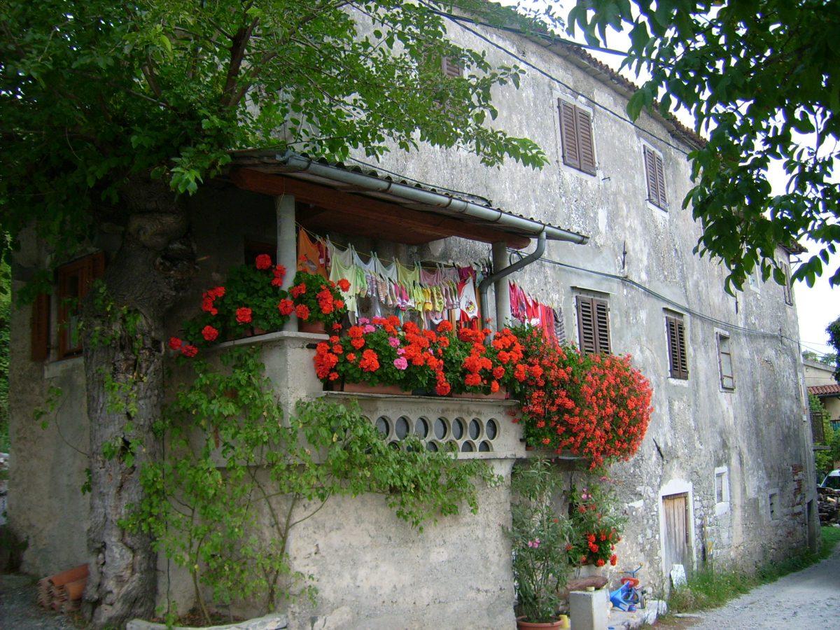 Крас Словения